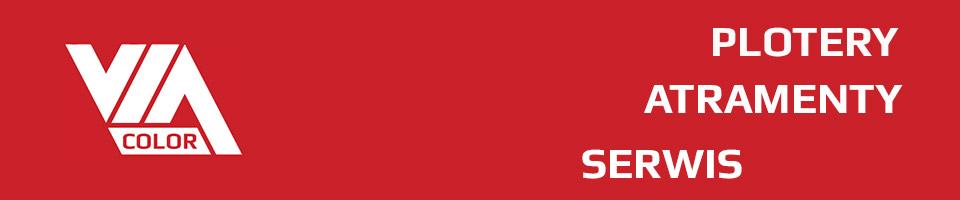 via-color-logo